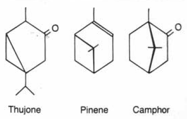 Chemical structures of selected terpenes. See text for details.